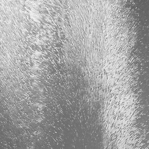 uzorchatoe-steklo-shinshilla-besczvetnoe