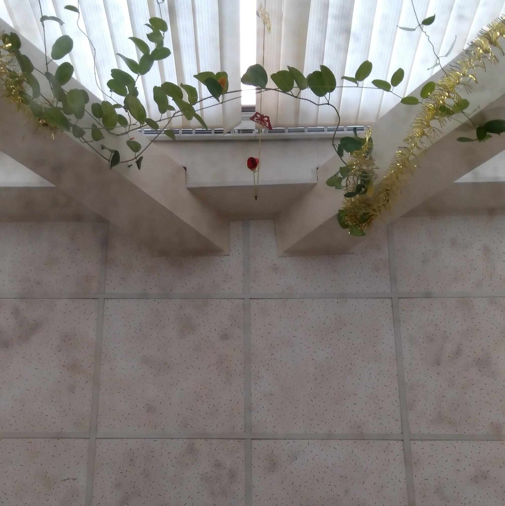 Состаренное зеркало А1 Н-3 метра